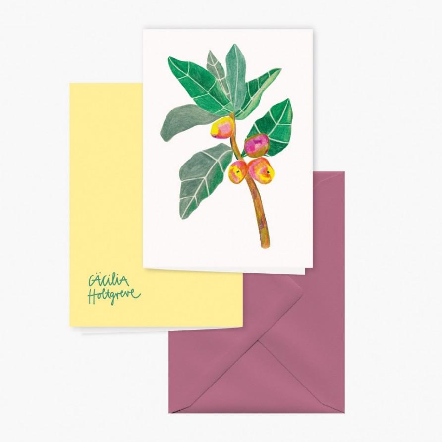 Grusskarte »Mango Tango« mit rosanem Umschlag und Rückansicht von Cäcilia Holtgreve