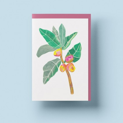 Grusskarte »Mango Tango« mit lilanem Umschlag von Cäcilia Holtgreve